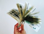 Českem plave dluhopisová chobotnice