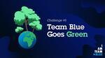 Zaměstnanci ČSOB budou sázet stromy a čistit přírodu. Startuje pátá výzva Team Blue
